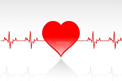 Cardiogram and Red Heart on White Background