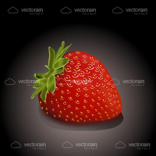 Single Fresh Strawberry on a Black to White Hued Background