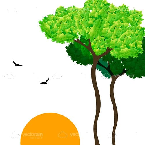 Nature Scene with Trees, Sun and Birds