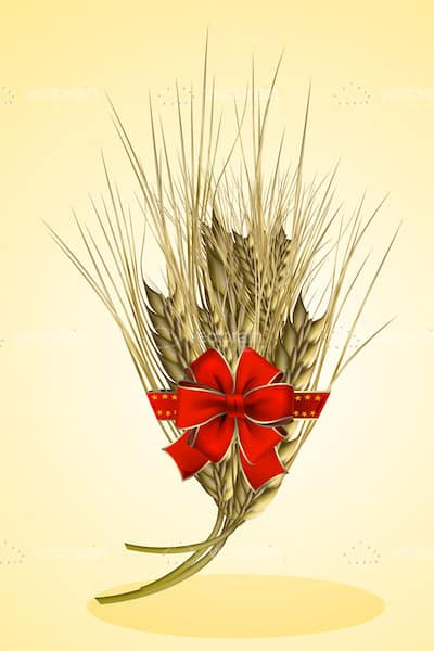 Wheat Spike with Red Ribbon and Bow