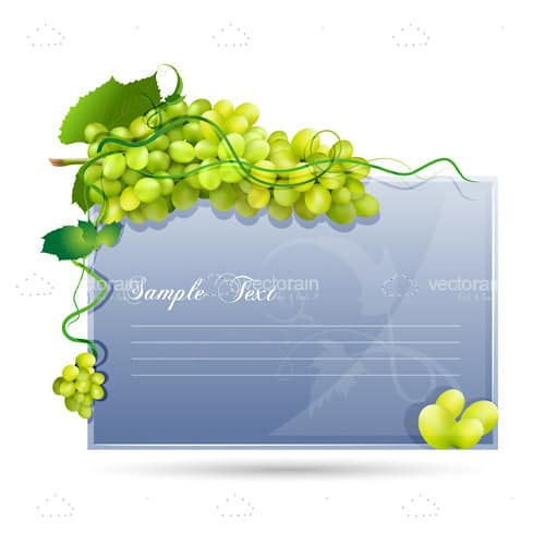 Blue Coloured Card Background with Grapes and Sample Text