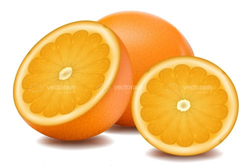 Illustrated Orange and Slices