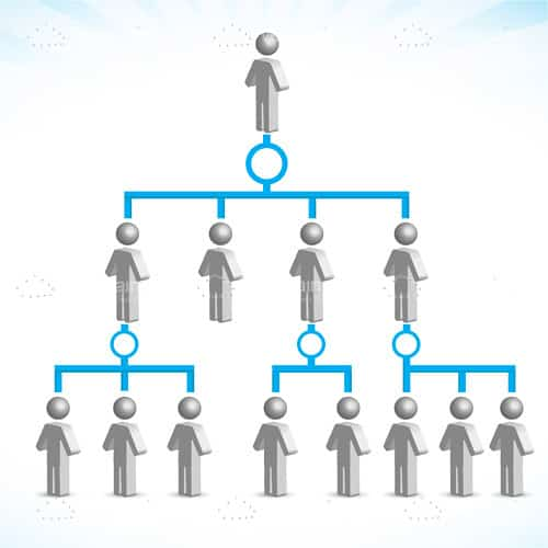 Company Family Tree