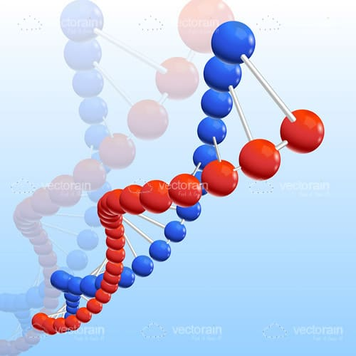 Red and Blue DNA Chain