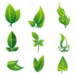 Natural Green Leaves Icon Pack
