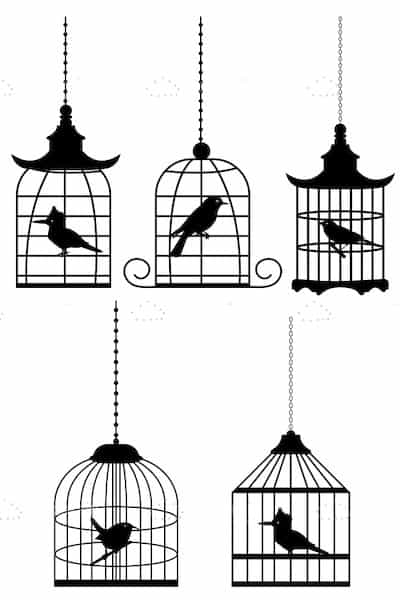 5 Silhouette Birds in Cages